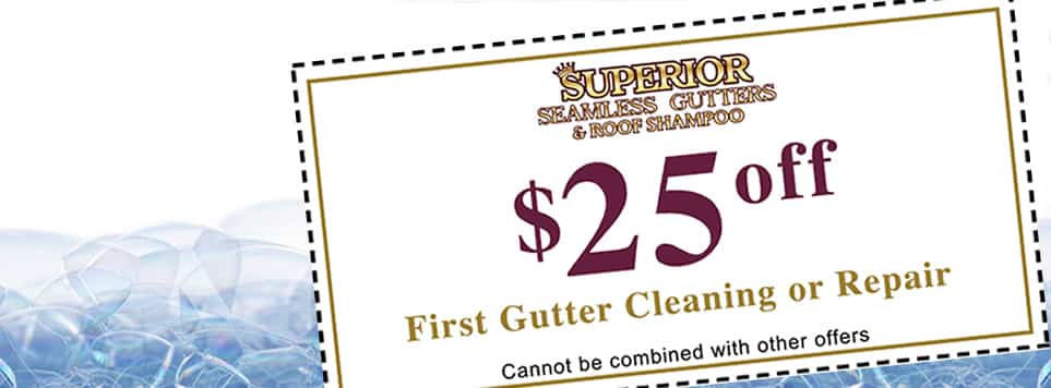 $25 Off Gutter Cleaning and Repair