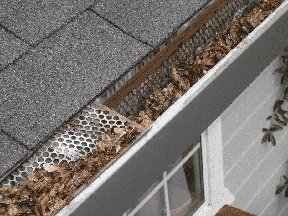 gutter guards that need to be cleaned