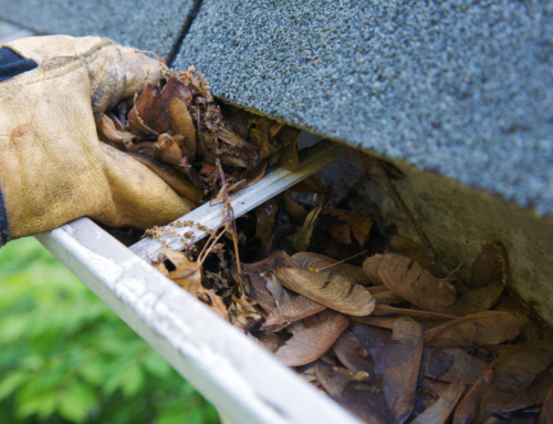 When Is the Best Time to Have Your Gutters Cleaned?